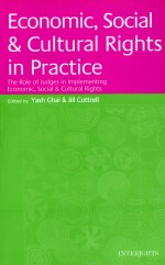 Economic, Social and Cultural Rights in Practice