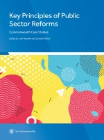 Key Principles of Public Sector Reforms